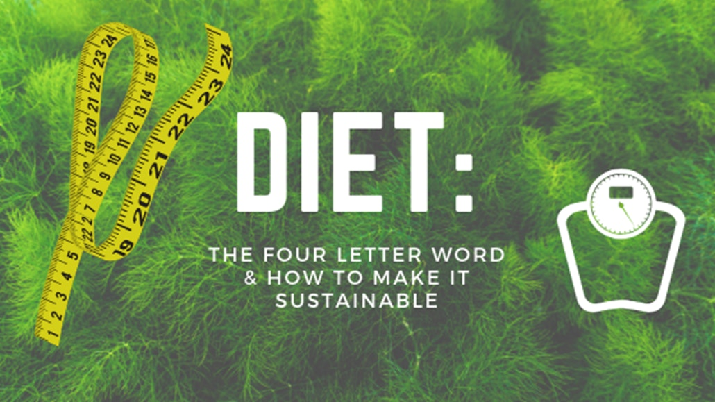 sustainable and healthy diet